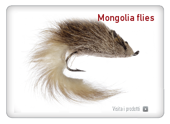 Mongolia Flies