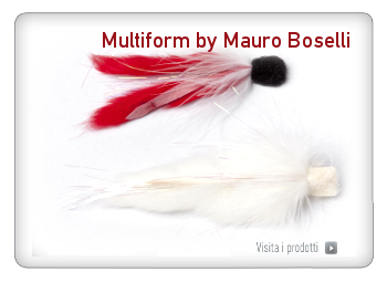 Multiform by Mauro Boselli